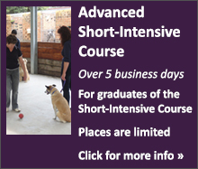 Animal-Assisted Therapy Course