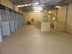 The Alpha Canine Group's Specialist Indoor Canine Good Behaviour Shaping and Observation Complex