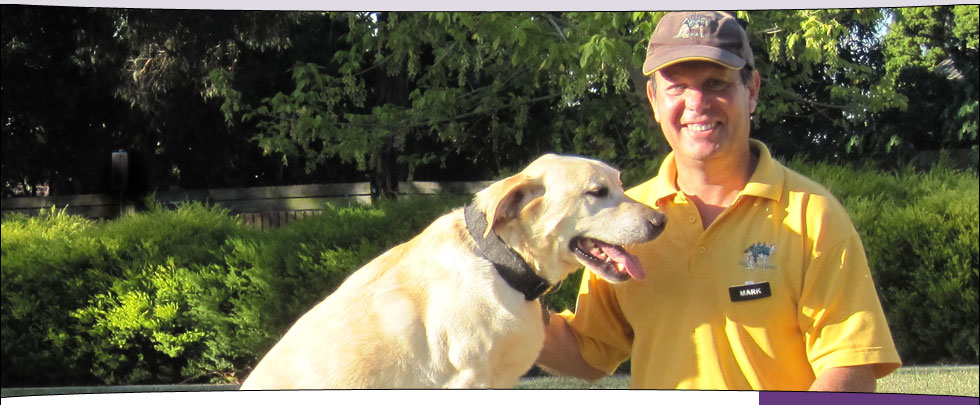 Mark and his dog, Ralph (Golden Labrador)